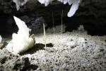 гипсовые кристаллы в Оптимистической пещере