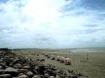 пляж Патенга в Бангладеше