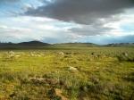 Нацпарк Хара-Ус-Нур, Монголия
