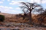 Нацпарк Руаха в Танзании