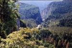 Юпшарский каньон, Абхазия