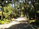 Ботанический сад Кордовы