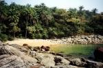 Архипелаг Иль-де-Лос в Гвинее – вулканические острова с красивой природой