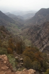 Национальный парк Дей Форест, Джибути