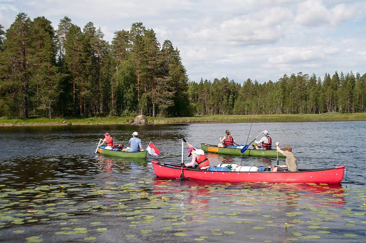 Как экологический туризм способствует развитию экологии?