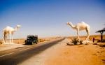 Западная Сахара в Африке