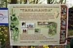 Takamanda National Park
