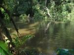 река Синоэ