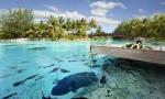 Lagoonarium Bora Bora