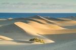 Banc d'Arguin National Park