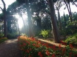 Карасанский парк