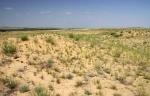 Голубинские пески
