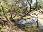 Национальный парк Диндер