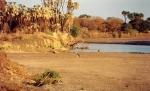 Dinder NP in Sudan