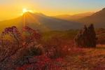 Карадагский природный заповедник – уникальный уголок Крыма