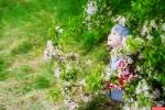 яблоневый сад в Санкт- Петербурге