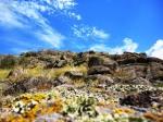 на территории заповедника Каменные могилы