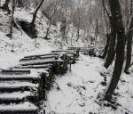 старая лестница на Замковую гору