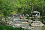 терренкур на реке Катунь в Белокурихе