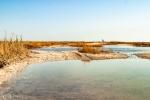 остров Джарылгач в Крыму