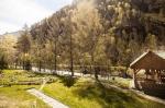 В Горный Алтай летом! Базы отдыха в окружении природы