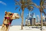 Солнечные ОАЭ круглый год ждут гостей